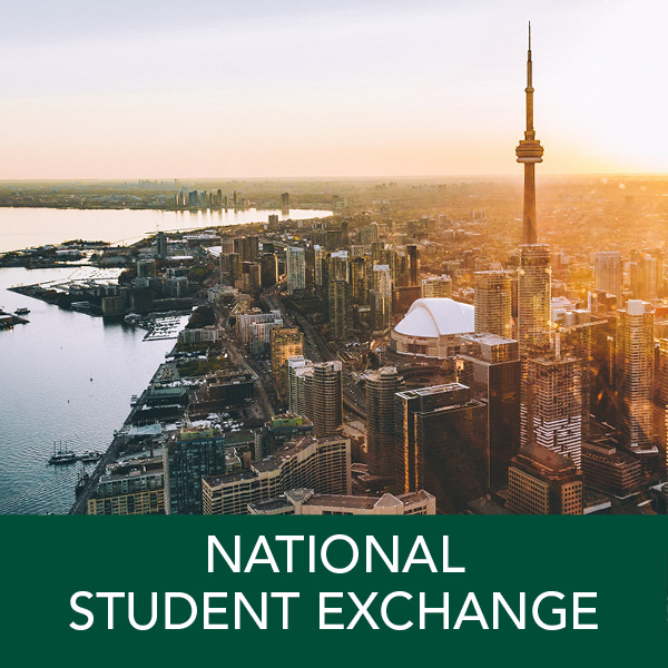 "National Student Exchange: Domestic exchange opportunities at more than 190 universities are available for up to one year. Study ""abroad"" in the United States, Canada, Puerto Rico, Guam, or the U.S. Virgin Islands. Earn transfer credit towards your major, minor, and GEs."