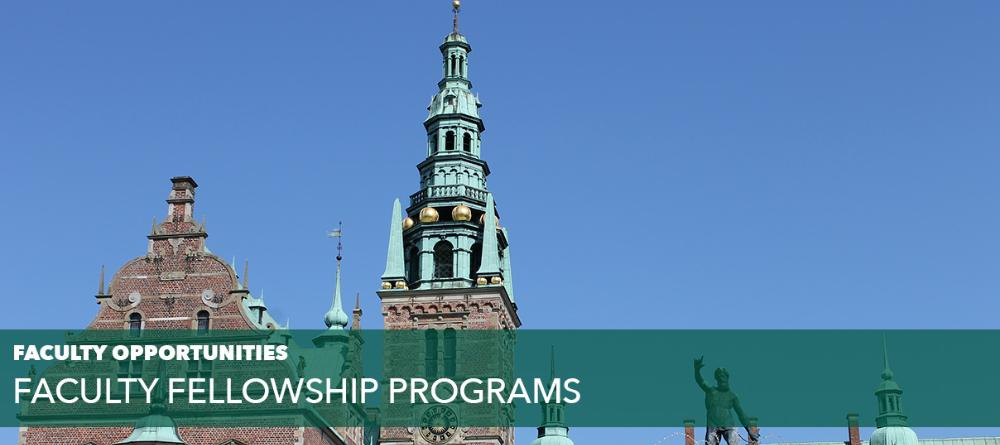 Faculty Fellowship Programs